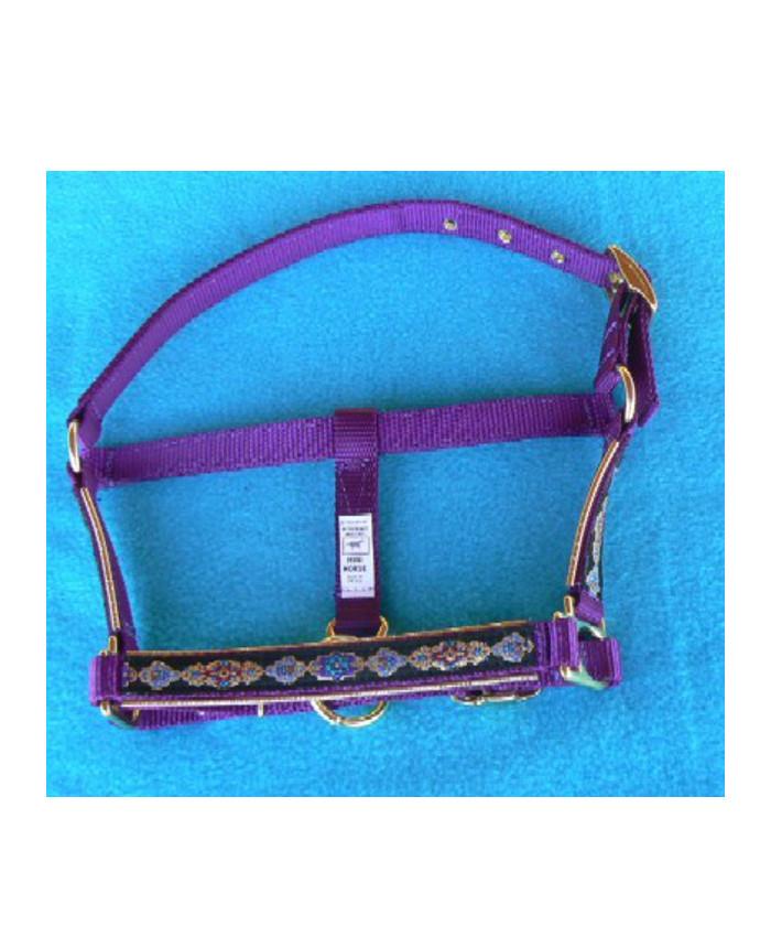 halfter-violett-mv