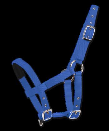 Neoprennase Halfter blau