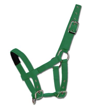 Halfter Neopren grün