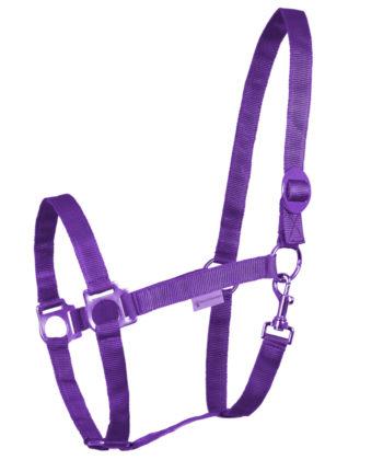 perlonhalfter-violett