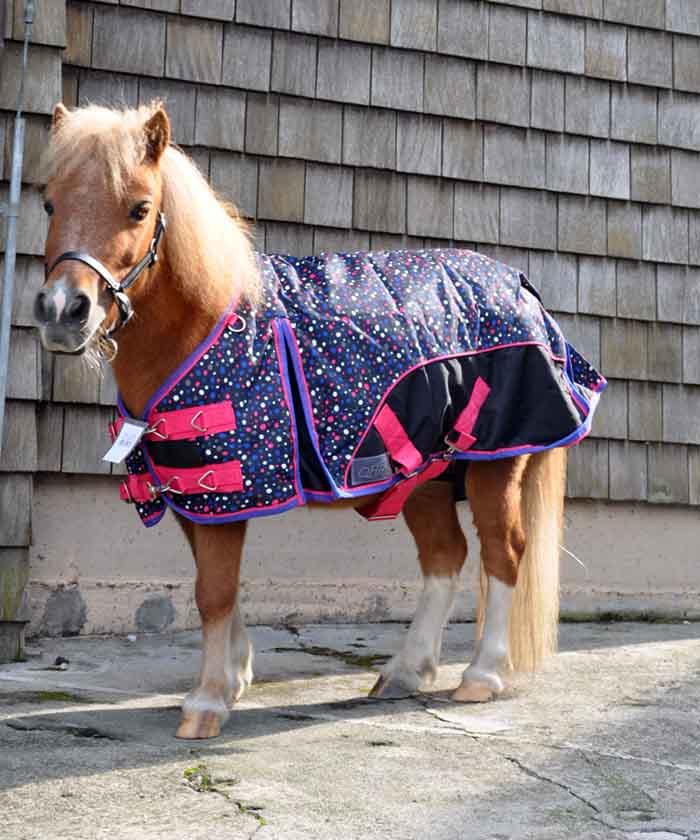 shetty-regendecke-punkte-pony-blau