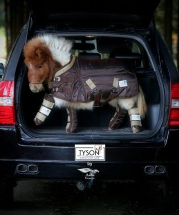 transportgamaschen-braun-mini