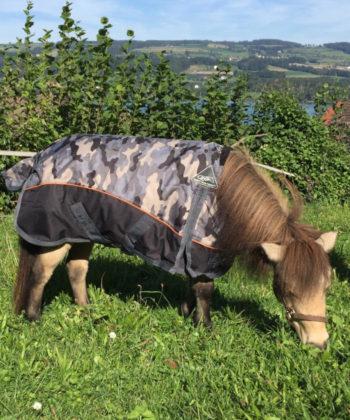 camouflage-zwei